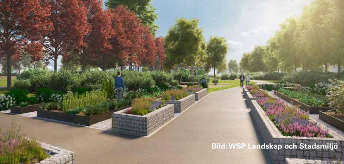 Bild: WSP Landskap och Stadsmiljö